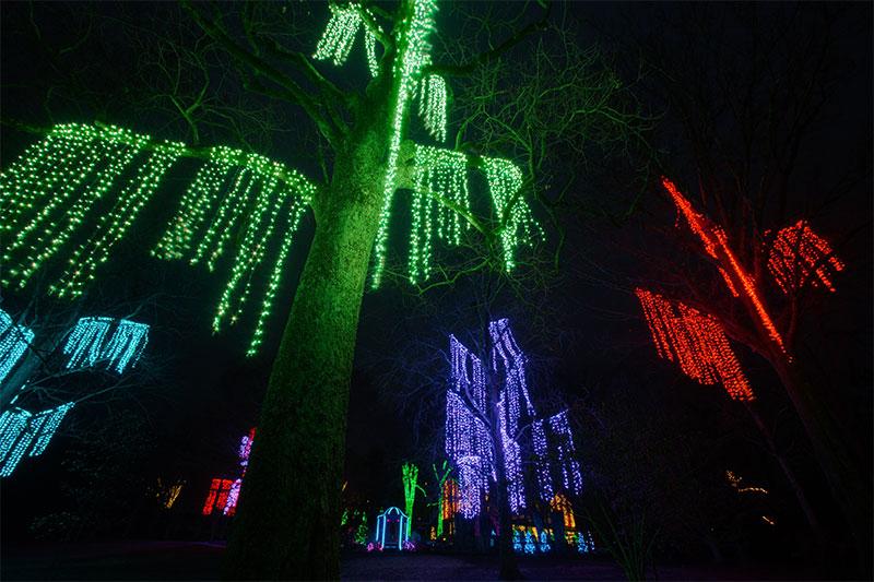 nashville-custom-commercial-holiday-tree-lighting-designs