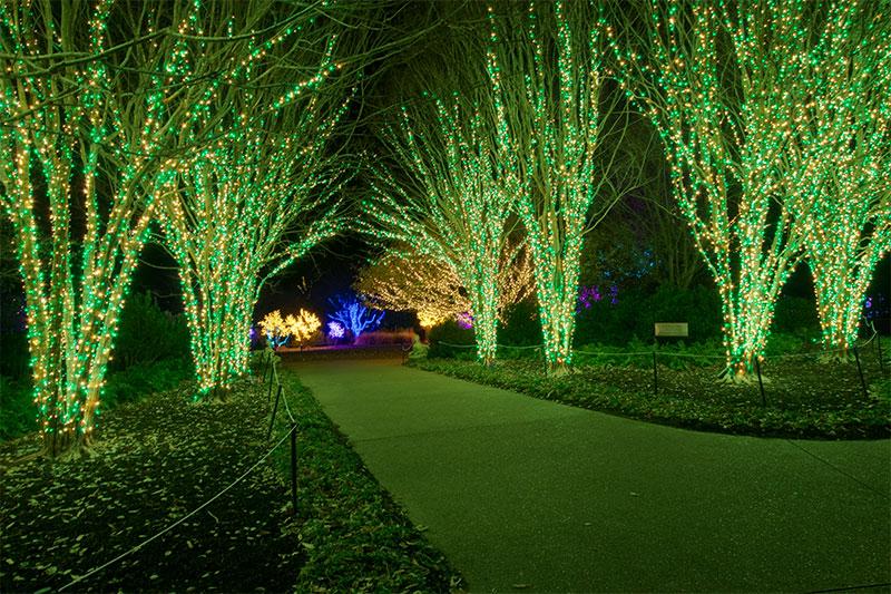 outdoor-christmas-lighting-installer-nashville-tn