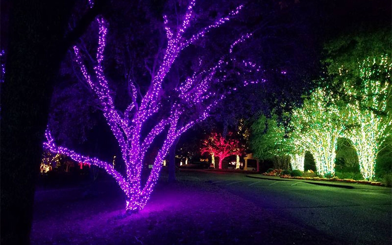 nashville-tn-commercial-holiday-tree-wrap-lighting