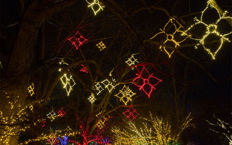 nashville-tn-eclectic-holiday-commercial-outdoor-lighting
