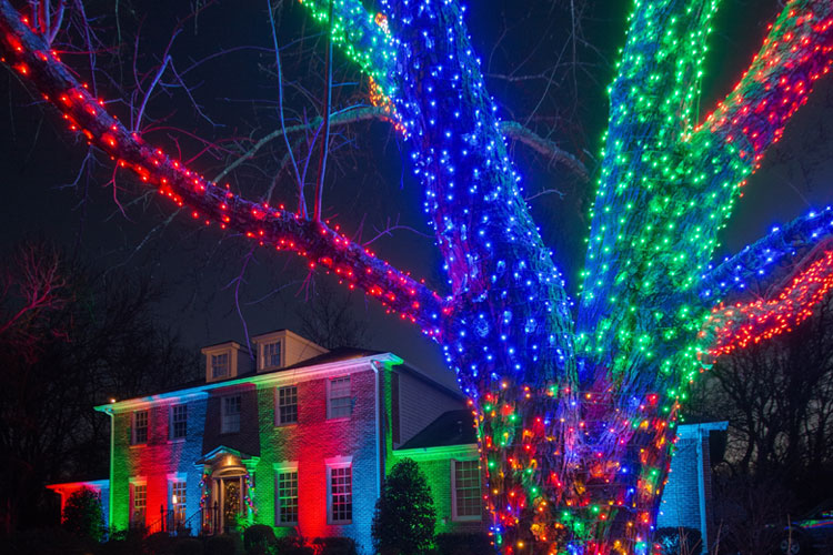 one of our newest outdoor lighting introductions for the holiday season is our color saturation led outdoor lighting