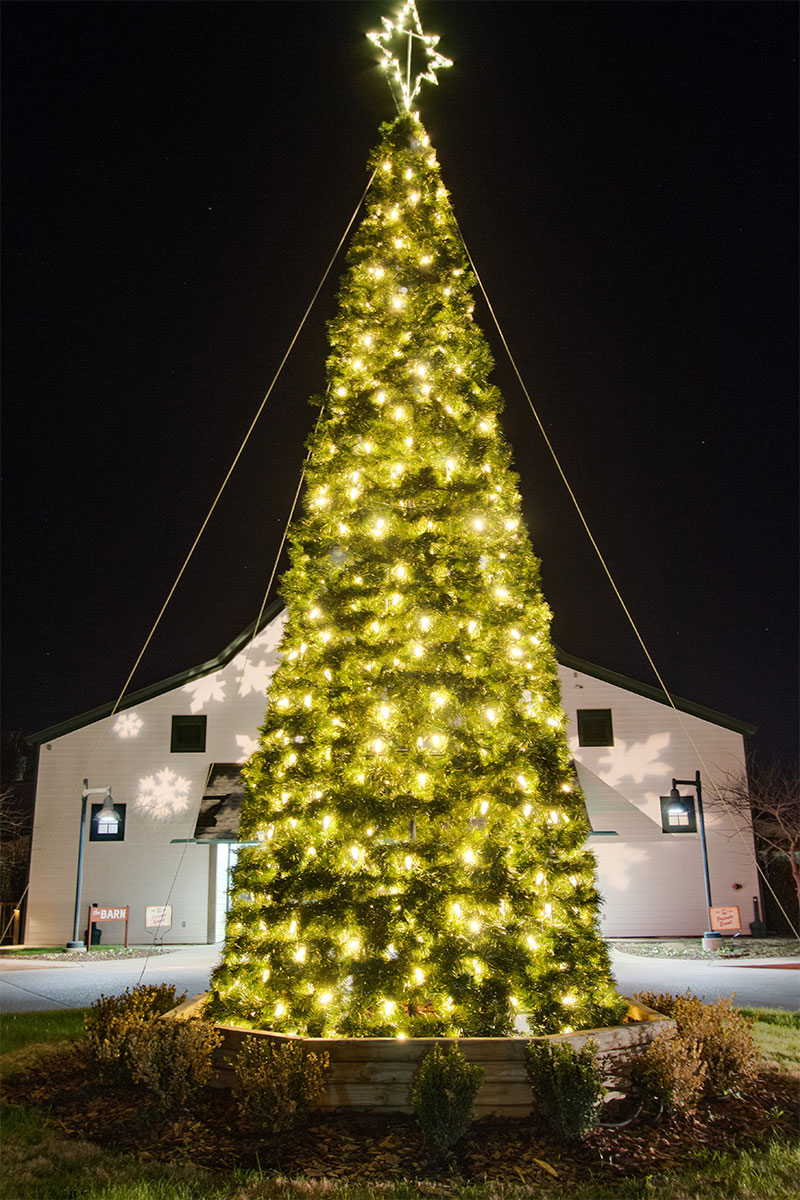 nashvilel-commercial-holiday-tree-lighting-at-the-loveless-barn-2015-holiday-13