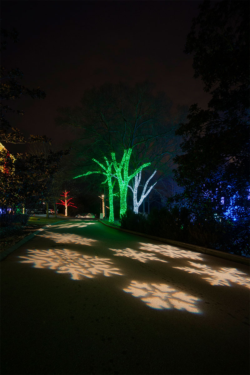 nashville-commercial-tree-wrap-lighting-and-projection-lighting