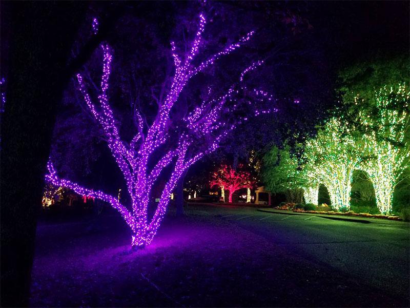 nashville-tn-commercial-holiday-tree-wrap-lighting