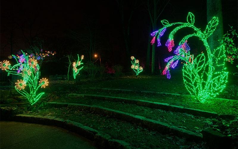 botanical-inspired-commercial-holiday-lighting-at-cheekwood