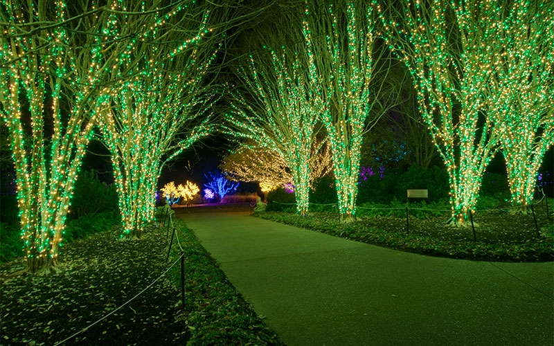 Green Christmas Lights.Holiday Lighting Design Ideas Custom Commercial Christmas