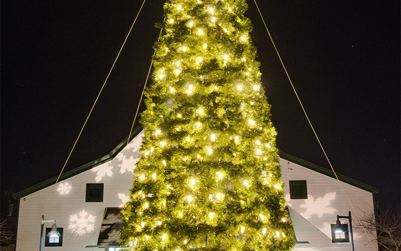 nashvilel-commercial-holiday-tree-lighting-at-the-loveless-barn-2015-holiday-13